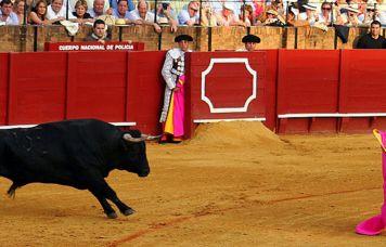 La Real Maestranza de Sevilla